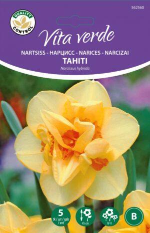 Nartsiss Tahiti 5tk
