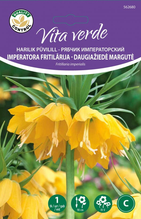 Fritillaria Imp. Lutea 1tk