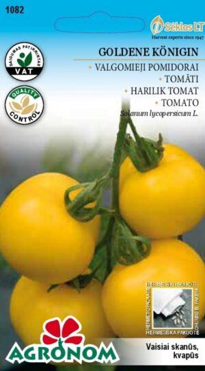 Tomat Goldene Königin - Solanum lycopersicum L.