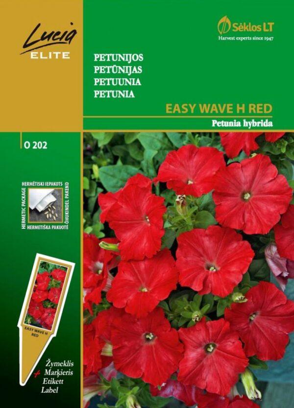 Petuunia Easy Wave H Red - Petunia hybrida
