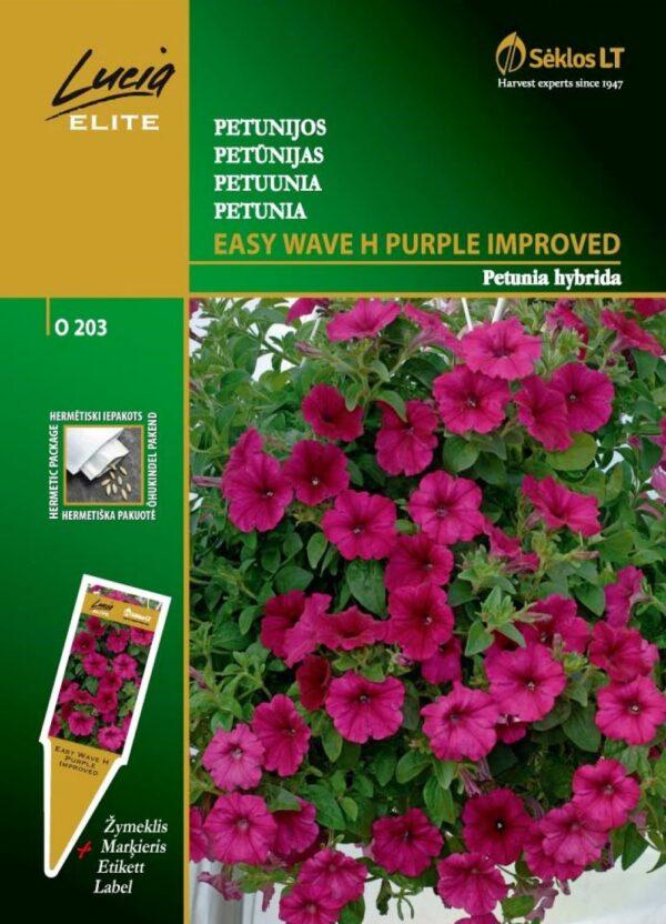 Petuunia Wave H Purple Improved - Petunia hybrida