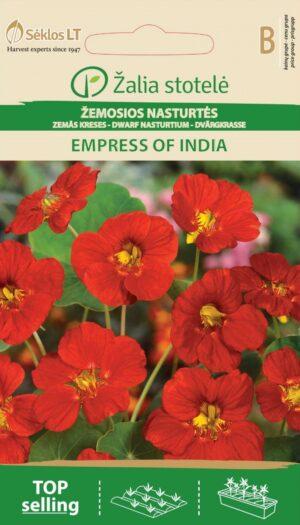 Madal mungalill Empress of India - Tropaeolum nanum*