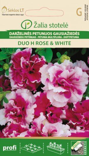 Petuunia Duo H Rose & White - Petunia hybrida multiflora