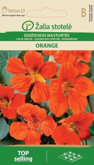 Suur mungalill Orange - Tropaeolum majus L.
