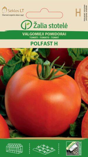 Tomat Polfast H - Solanum lycopersicum L.