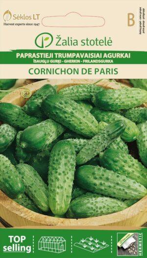 Kurk Cornichon de Paris - Cucumis sativus L.