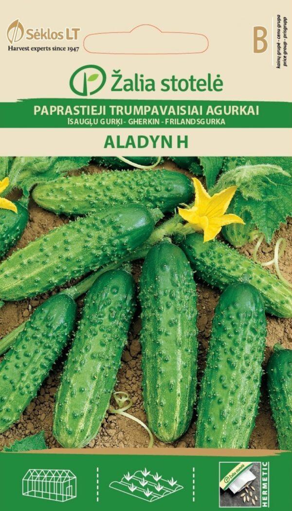 Kurk Aladyn H - Cucumis sativus L.