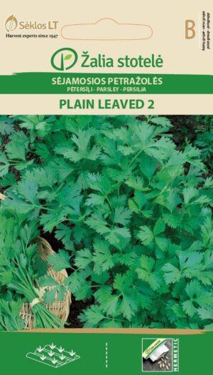Petersell Plain Leaved 2 - Petroselinum crispum (Miller) Nyman ex A. W. Hill