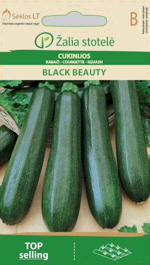 Suvikõrvits Black Beauty ökoseeme - Cucurbita pepo L.