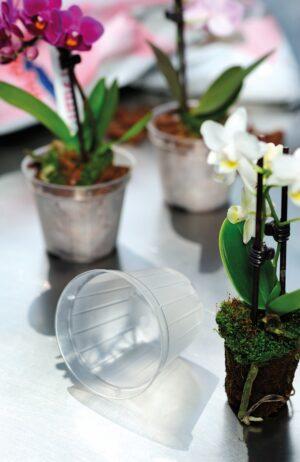 Orhideepott plast 17cm x 16cm läbipaistev