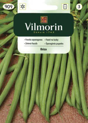 Aeduba Ibiza - Phaseolus vulgaris