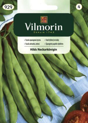 Aeduba Hils Neckarkönigin - Phaseolus vulgaris