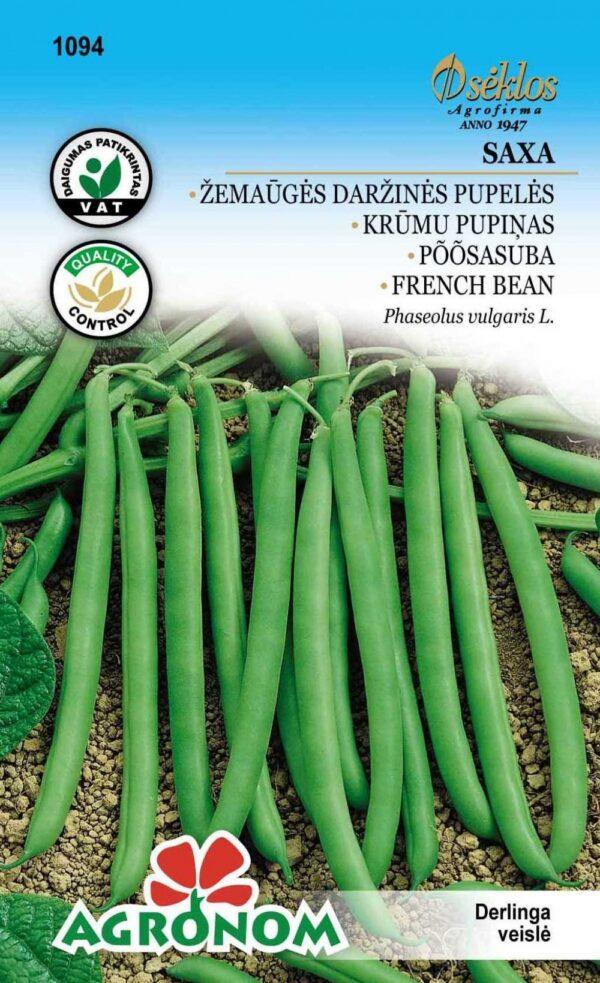 Aeduba Saxa - Phaseolus vulgaris L.